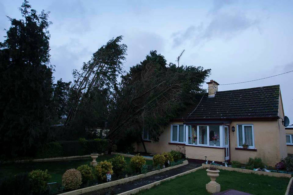 A tree falls on a house south of Arklow