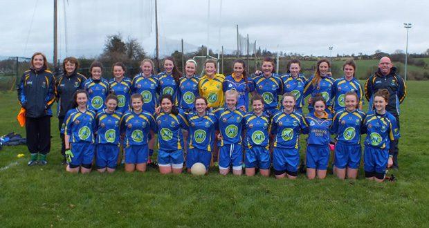 Wicklow-U16-County-Team