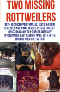 missing rottweilers