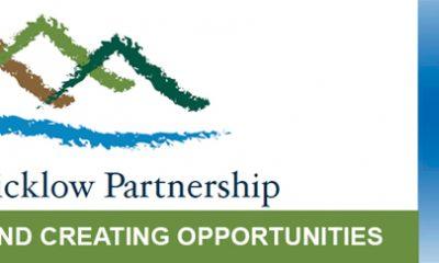 Wicklow county partnership