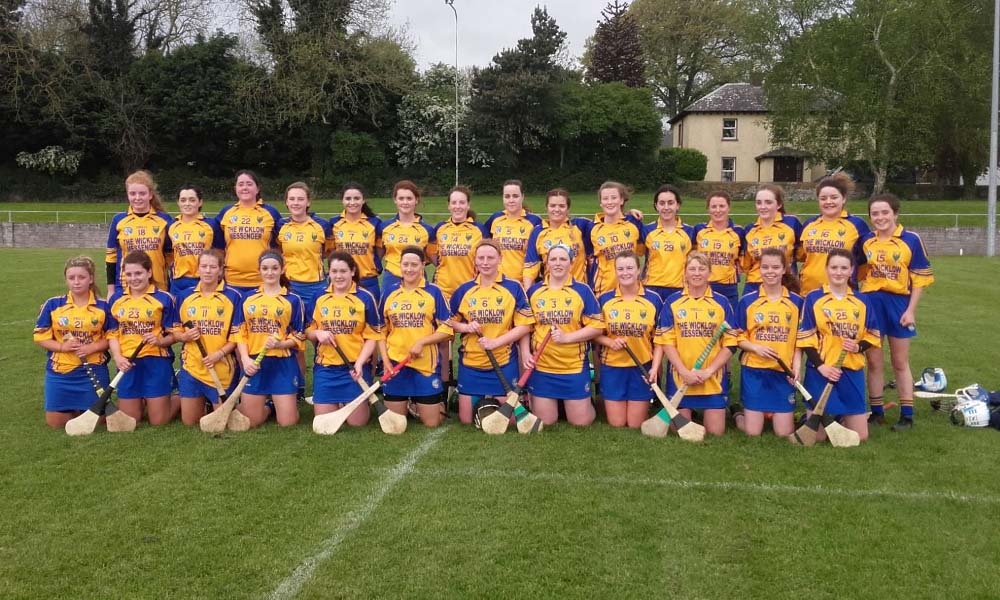 Wicklow's junior camogie team who beat Louth in the semi-final of the Leinster Junior Championship in Dunleer on Saturday night.