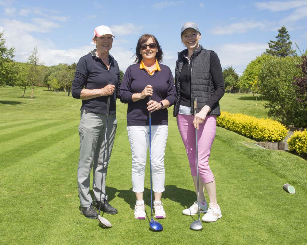 Wicklow Chamber Golf 2