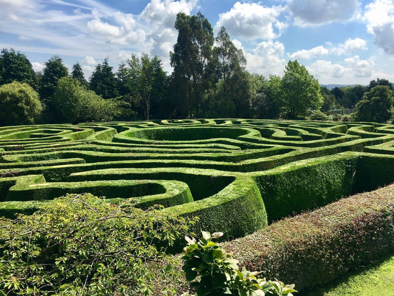 Greenane maze 2
